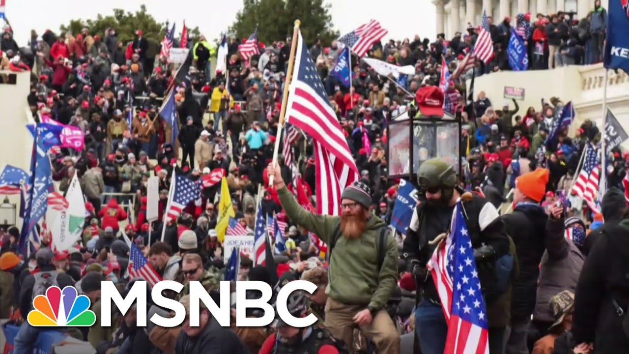 Tim Miller On What GOP Will Learn From A Capitol Riot Investigation | The 11th Hour | MSNBC 1