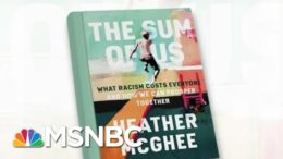 'The Sum Of Us' Looks At How The Country At Large Pays For Racist Policies | Morning Joe | MSNBC 1