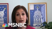 Victoria DeFrancesco Soto: 'This Lying That Ted Cruz Is Giving Is Just So Hollow' | Deadline | MSNBC 2