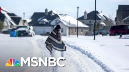 'This Is A Wake Up Call': Experts Say Climate Change Played A Role In TX Storm | The ReidOut | MSNBC 4
