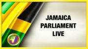Jamaica's Ceremonial Opening of Parliament - February 18 2021 4