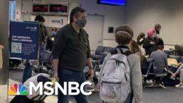 'Sniveling Coward': Cancún Cruz Won't Live Down His 'Walk Of Shame' | The Beat With Ari Melber 9