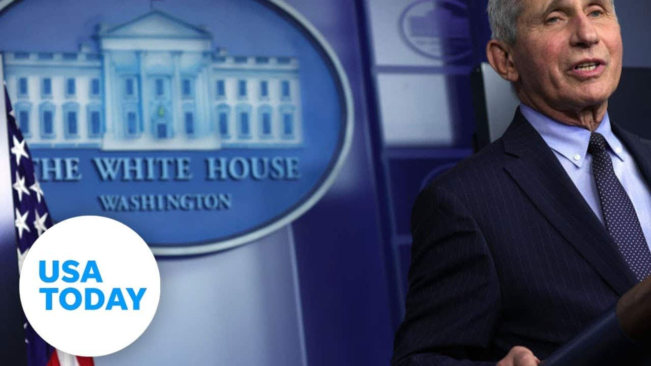 The White House COVID-19 Response Team holds a news conference (LIVE)   USA TODAY 1