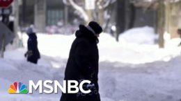 TX Officials At The State Level Not Doing Their Jobs, Says Fmr. HUD Secretary | Morning Joe | MSNBC 1