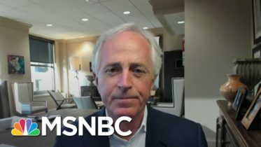 Fmr. Sen. Corker Says In Terms Of A Standard Bearer, 'Republicans Don't Have One' | Deadline | MSNBC 10