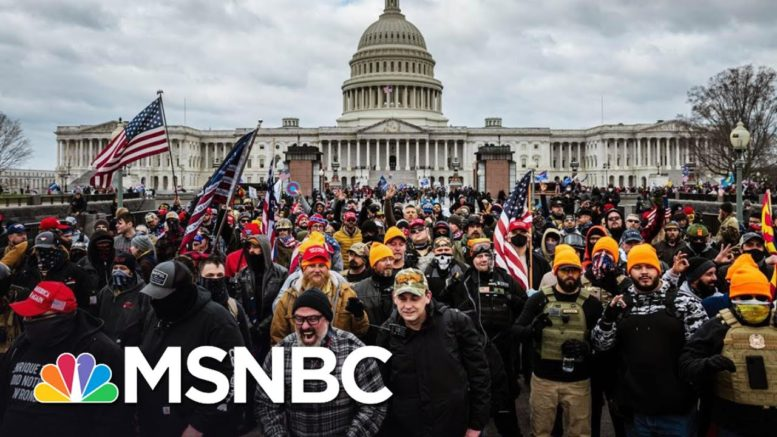 Capitol Riot Hearing Shows Domestic Terrorism Is Alive And Well In U.S. | The 11th Hour | MSNBC 1