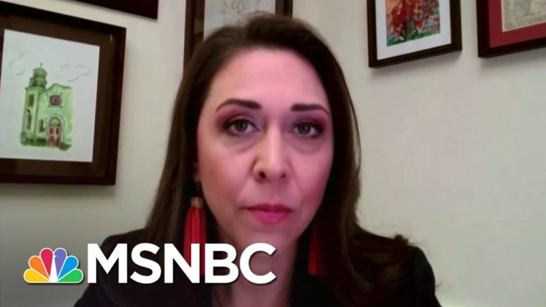 House Members Voice Frustrations Over Security During Capitol Riot | Andrea Mitchell | MSNBC 1