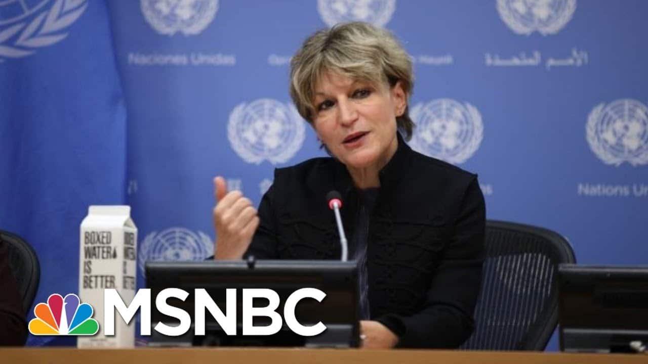 UN Official On Extrajudicial Killings Reacts To Khashoggi Murder Report | Ayman Mohyeldin | MSNBC 1