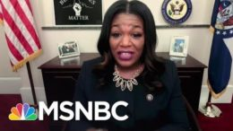 Rep. Bush: Minimum Wage Hike Could Be 'Difference Between Life And Death' For Some | All In | MSNBC 1