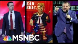 Liberal And Conservative Agree: Modern GOP Isn't Salvageable | The 11th Hour | MSNBC 8