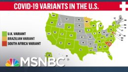 Virus Expert: We're At War With 'Dangerous' Covid Variants | The 11th Hour | MSNBC 9