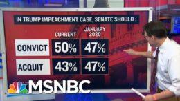 Steve Kornacki Examines Trump Impeachment Poll Numbers | Ayman Mohyeldin | MSNBC 9