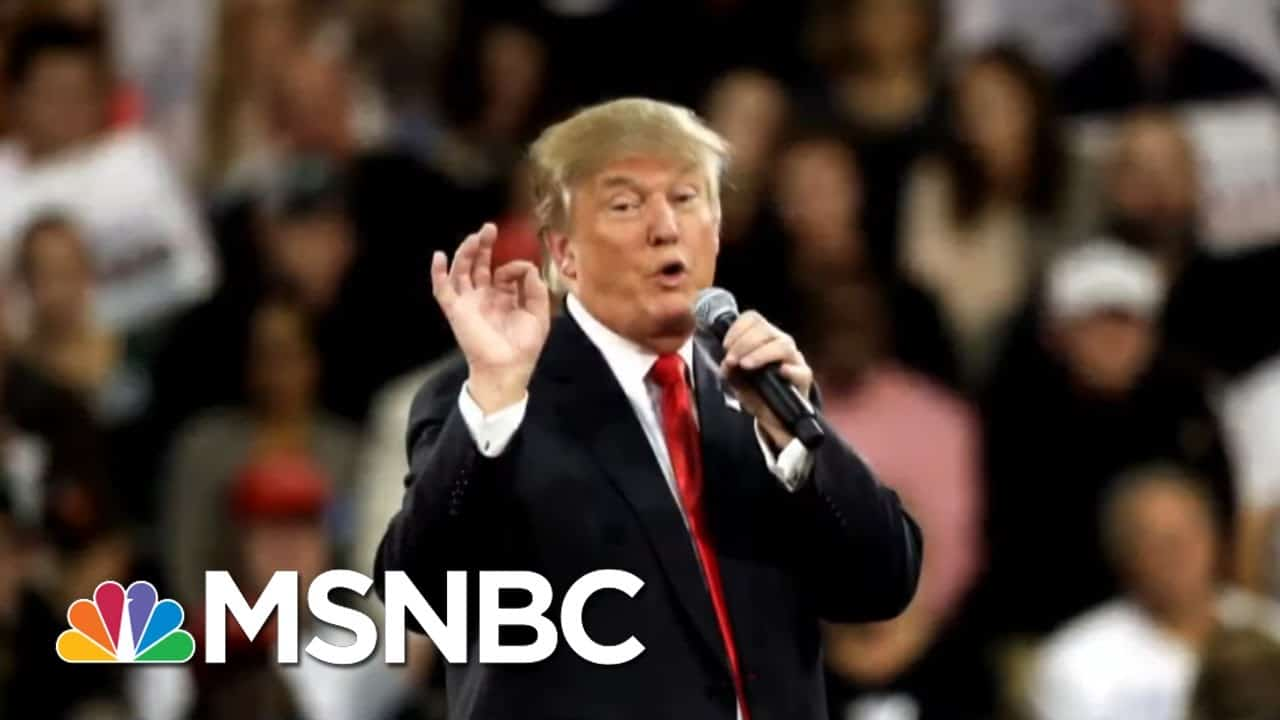 Trump's 2016 Win, Two Impeachments Center On His Opposition To Democracy | All In | MSNBC 1