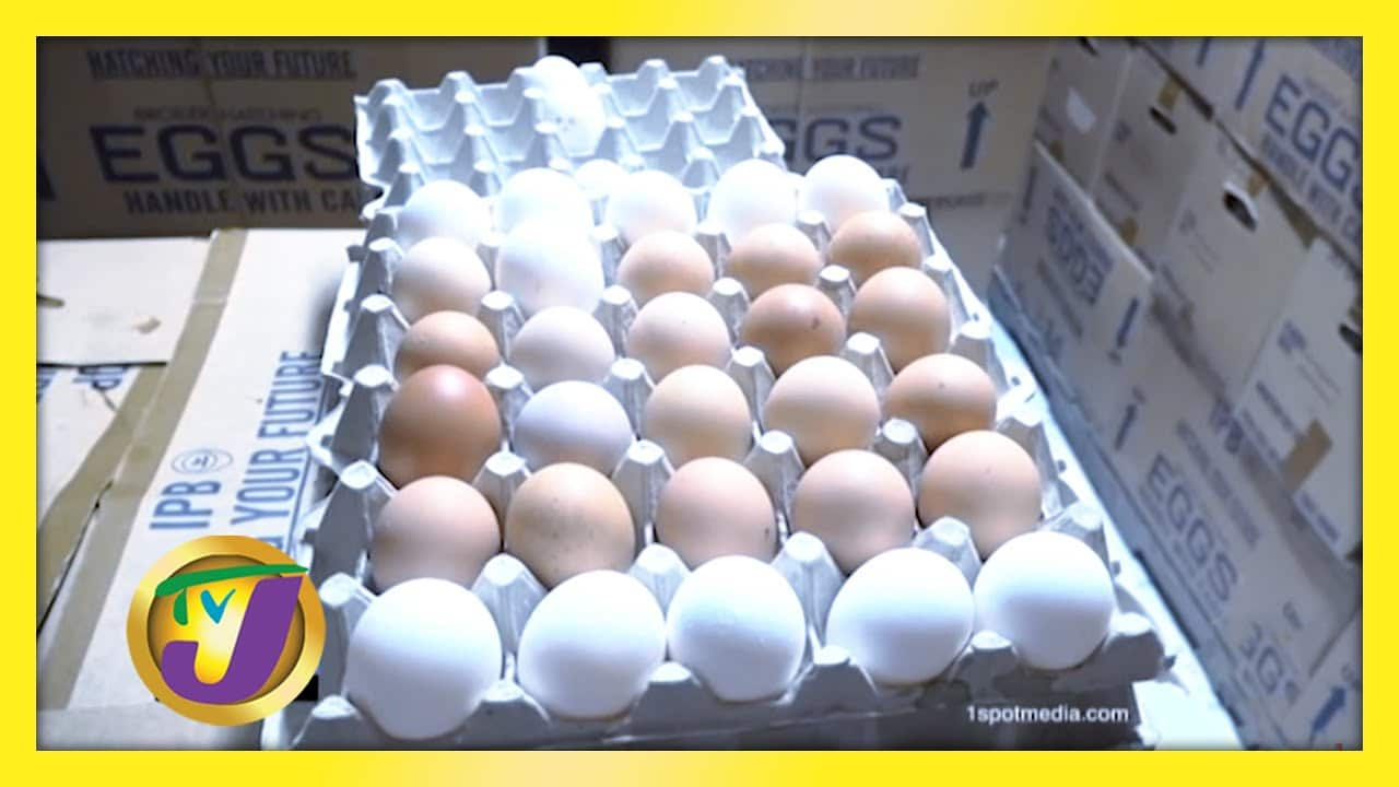 Calls for the Removal of GCT on Eggs: TVJ Business Day - February 5 2021 1