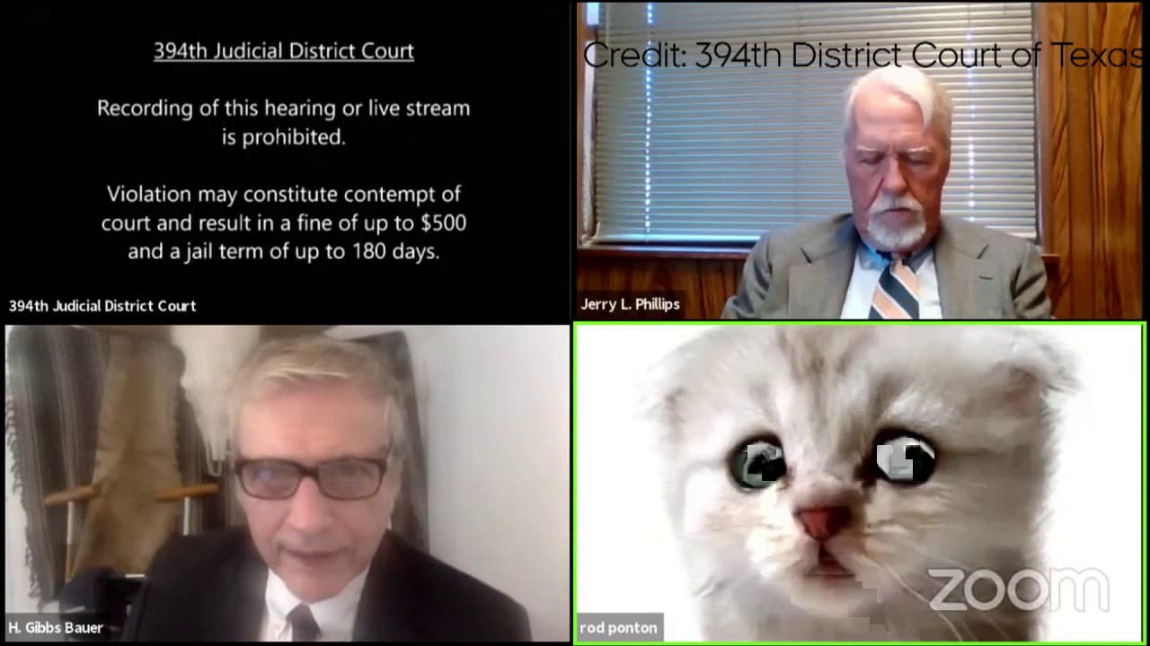 Reminder to check your filter settings....Attorney appears as cat during court hearing 1