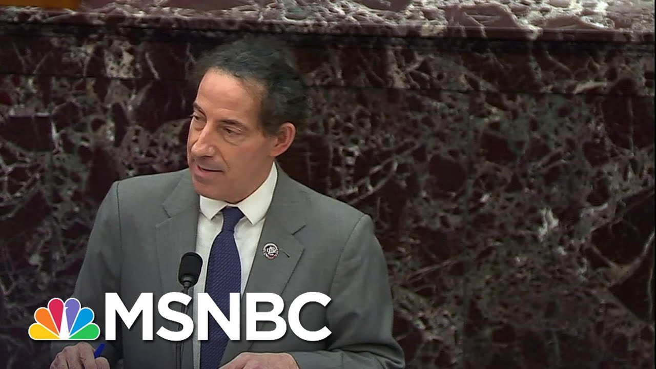 House Impeachment Managers Forcing GOP 'To Grapple With The Donald Trump Who Was President' | MSNBC 3
