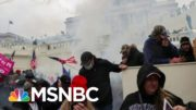 'Terrorist Sympathizer': Trump Accused Of Igniting MAGA Mob As Dems Close Trial 2