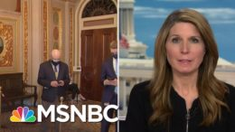 Nicolle: If Trump Inciting Riot Was In Dispute We Would've Heard About 'His Remorse' | MSNBC 6