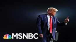 Neal Katyal: 14th Amendment Move To Ban Trump From Future Office May Require Court Process | MSNBC 9