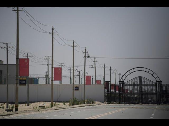 Parliament set to vote on motion declaring Muslim Uighur genocide in China 1