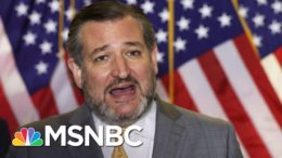 Cruz Ignores CDC Guidelines Talking To Press Without A Mask | The 11th Hour | MSNBC 6