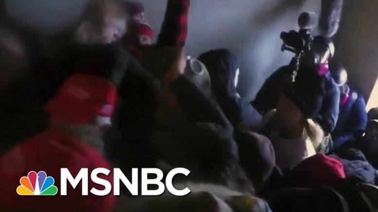 Trump: Capitol Rioters Were 'Zero Threat' To Lawmakers   Morning Joe   MSNBC 1