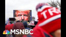 'Zero Threat': Trump, GOP, Right-Wing Media Downplay Horror Of Capitol Riot | All In | MSNBC 2