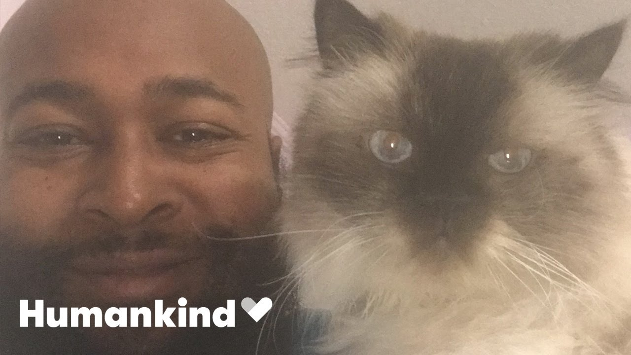 Rapper quits to start cat rescue | Humankind 6