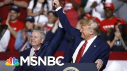 Lindsey Graham: Trump's 'Allowed Me To Be In His World'   The 11th Hour   MSNBC 3