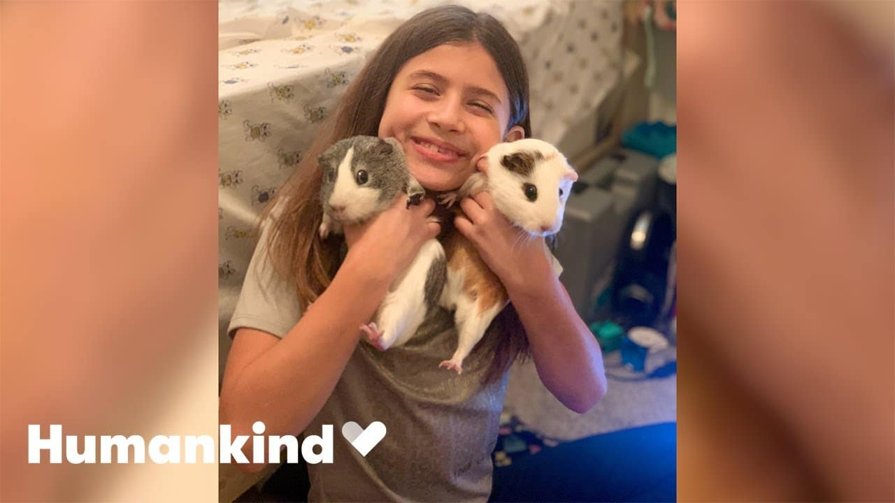Parents surprise little girl with two new best friends | Humankind 5