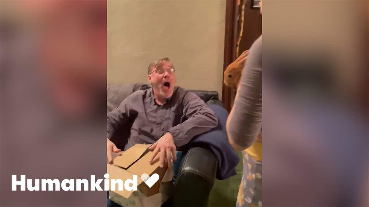 Dad squeals with delight when gifted rabbit | Humankind 9