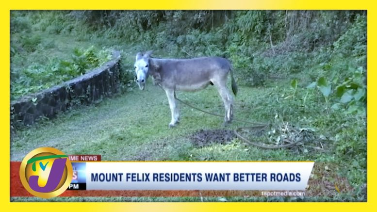 Mount Felix Residents Want Better Roads - March 7 2021 1