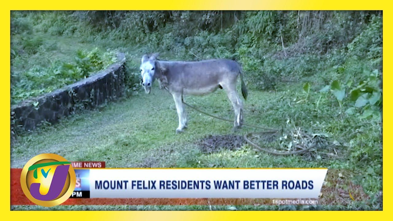 Mount Felix Residents Want Better Roads - March 7 2021 1
