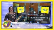 Reactions to Jamaica's Budget Debate | TVJ News - March 2021 3