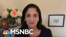 Dr. Kavita: Biden 'Not Only Invoked The Defense Production Act, But Used It' | Deadline | MSNBC 1