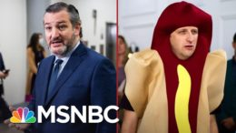 We're All Trying To Find The Ted Cruz That Did This | All In | MSNBC 3