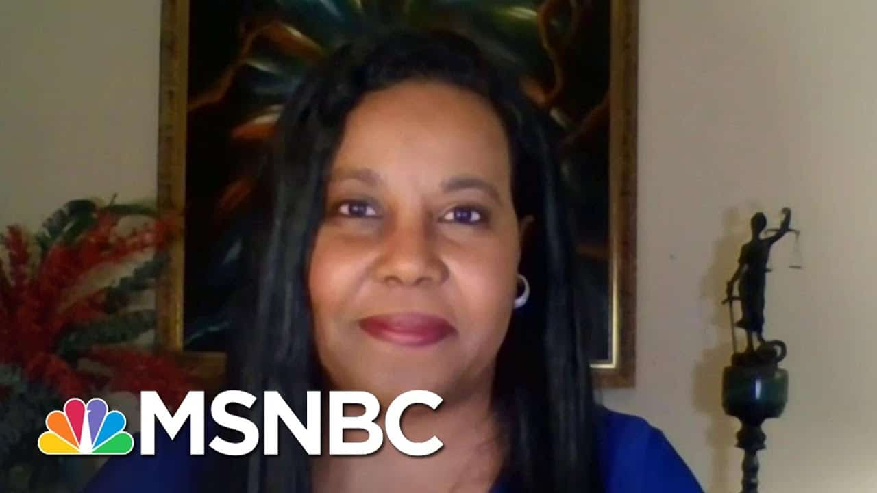 VA State Del: GA GOP Giving Life To Jim Crow With New Voter Suppression Law | The Last Word | MSNBC 1