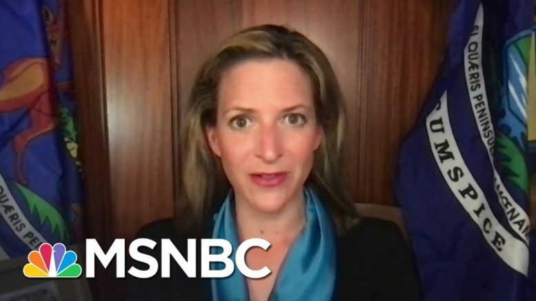 Michigan Secretary of State Vows To Fight Voter Suppression Effort From State GOP | MSNBC 1