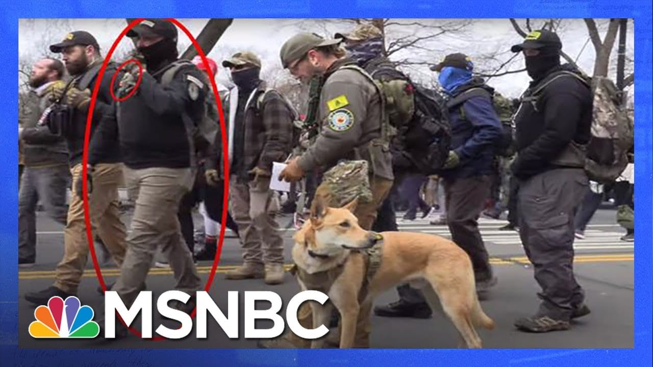 Experts Analyze New Information on Oath Keepers, Proud Boys Linked to Capitol Insurrection   MSNBC 1