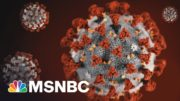U.S. Hasn't Turned The Corner On The Pandemic, Says Infectious Diseases Expert | Morning Joe | MSNBC 3