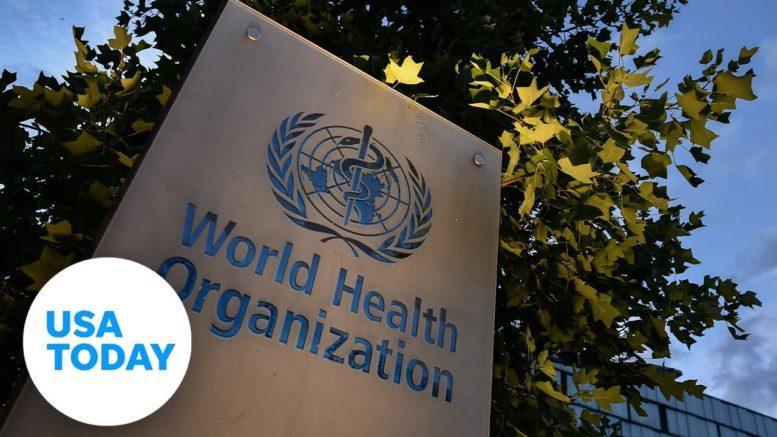 World Health Organization-China study on the origins of COVID-19 (LIVE) | USA TODAY 1