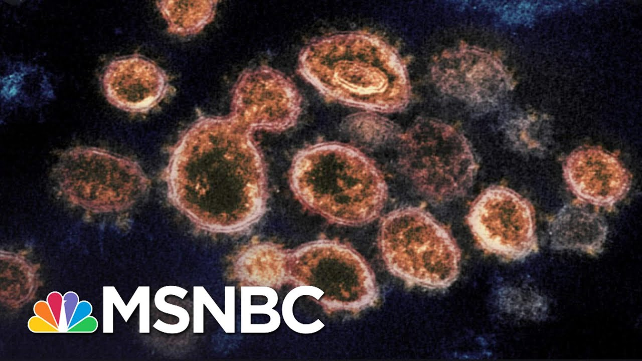 Experts Blast Texas And Mississippi For Ending Covid Restrictions | The 11th Hour | MSNBC 1