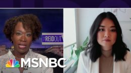 Anti-Asian Racism And Violence Spiking During Pandemic | The ReidOut | MSNBC 4