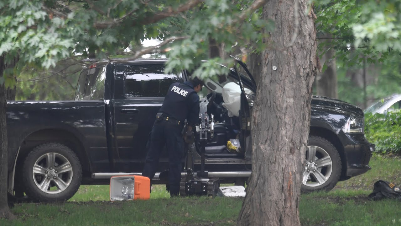 Reservist who rammed Rideau Hall gate, tried to arrest Trudeau gets six year prison sentence 2