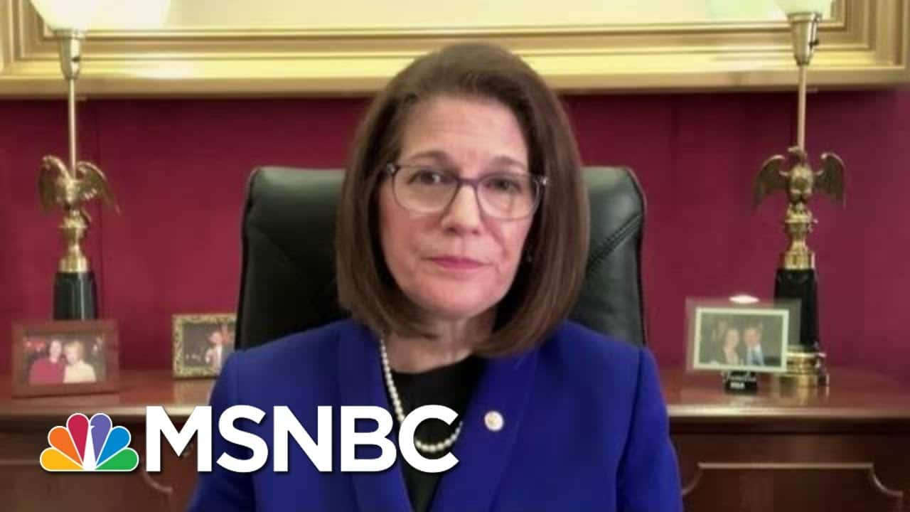 Sen. Cortez Masto: 'I Don't Believe' There Is A Wedge In NV Dem. Party   Hallie Jackson   MSNBC 4