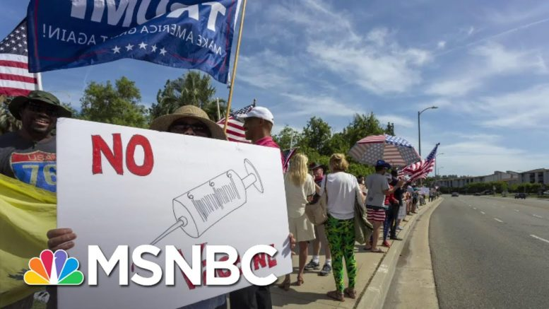 Nearly Half Of Trump Voters Say They Won't Get Vaccinated. Can They Be Convinced?   All In   MSNBC 1