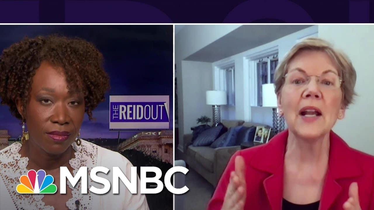 Elizabeth Warren: 'The Wealth Tax Is Popular Across America'   The ReidOut   MSNBC 6