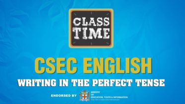 CSEC English - Writing in the Perfect Tense - The Cover - March 1 2021 6