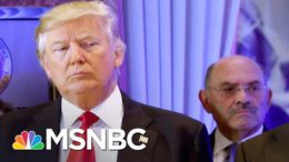 Neal Katyal: Prosecutors Are Trying To Flip Trump's Money Guy | The 11th Hour | MSNBC 9