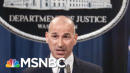 Peter Strzok Says What We're Seeing From The DOJ's Investigation Into Jan. 6 | Deadline | MSNBC 3